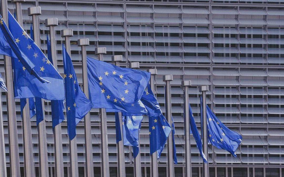 Finanziamenti Europei 2019 Guida e Consigli per Richiederli ed Ottenerli
