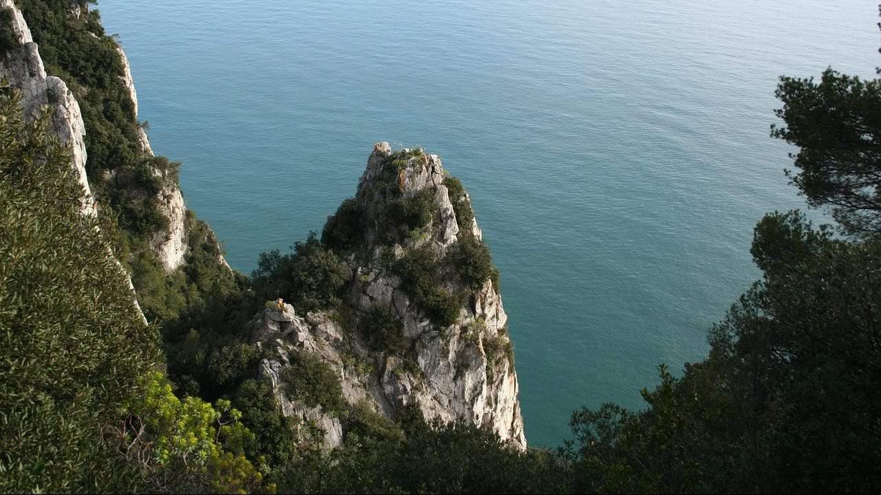 Finanziamenti Regione Liguria per il rilancio economico